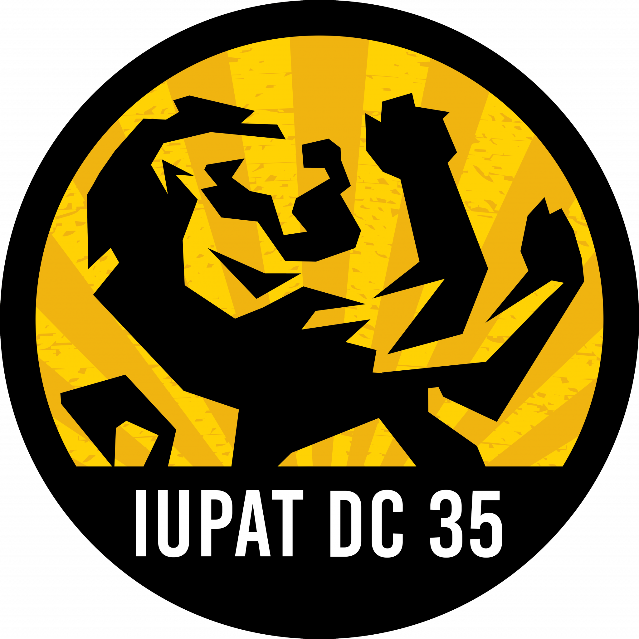 iupatdc35